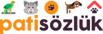 patisozluk.com